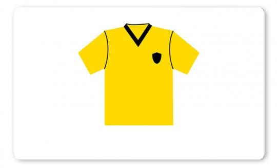 Trikot Brettchen gelb