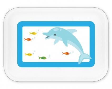 Delfin Brotdose groß mit Namen (türkis) türkis